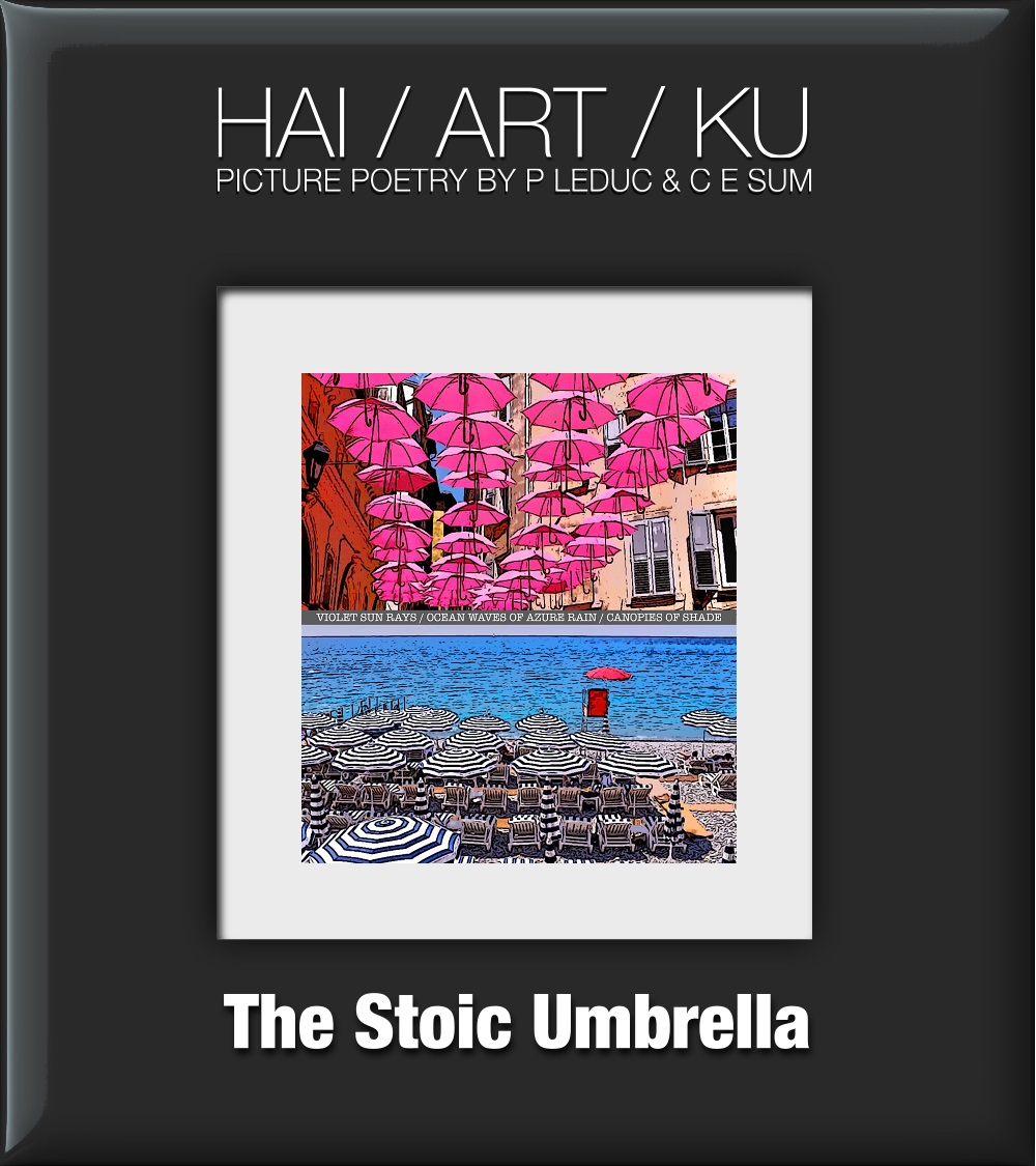 Stoic Umbrella 1