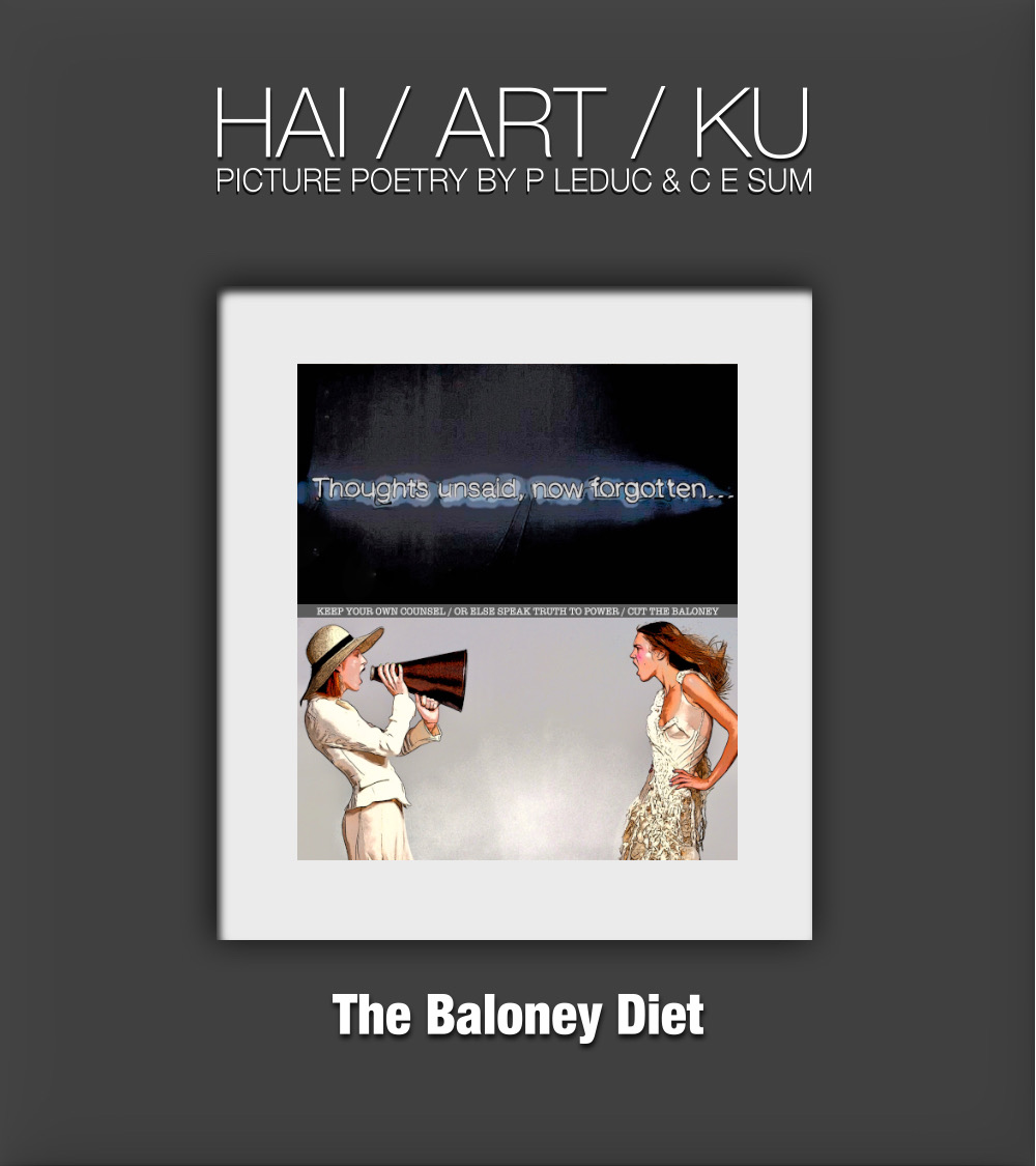 Cut the Baloney 1