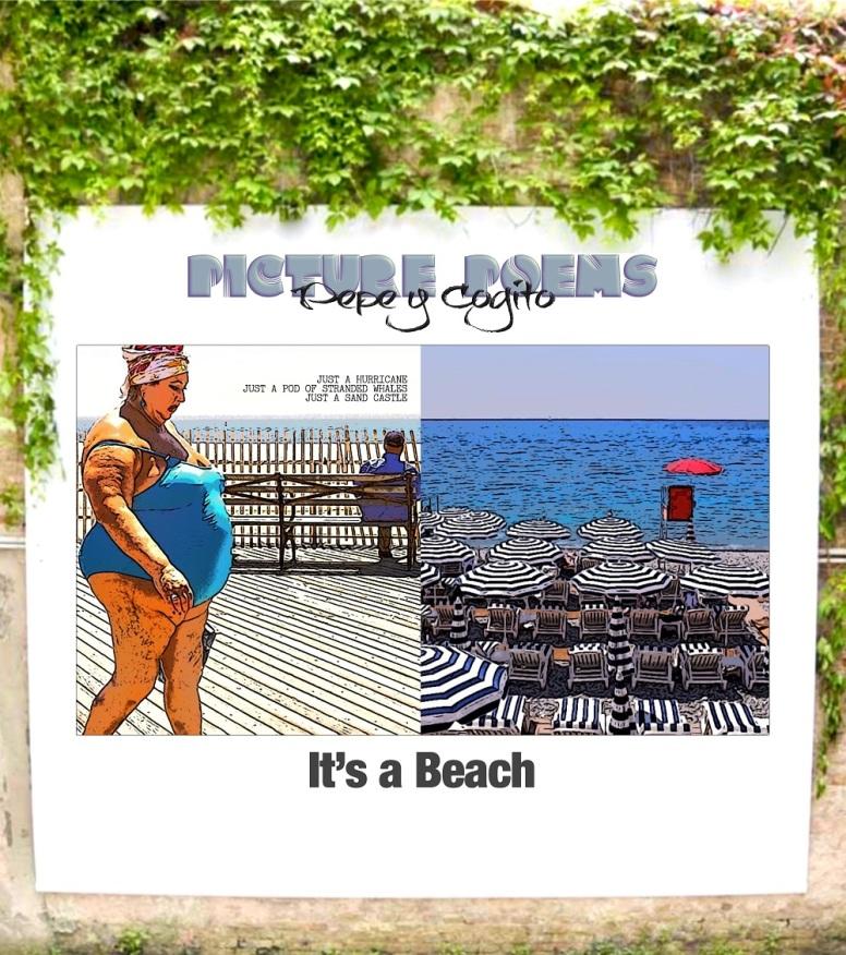 It's a Beach 1